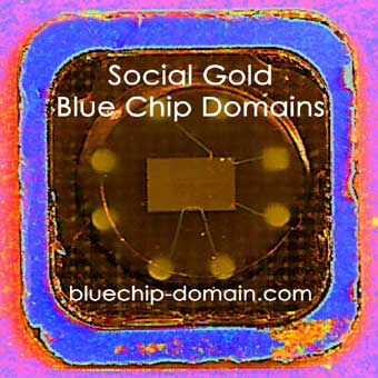 Social Gold - Blue Chip Domains